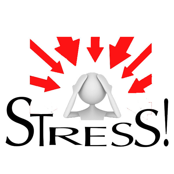 You Six Word Self: Defining Our Stress Response