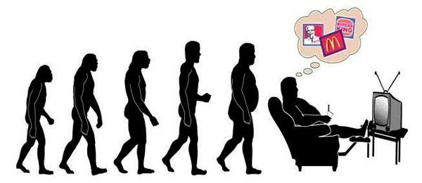 Human Evolution (12)