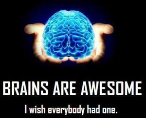 Brains-are-Awesome
