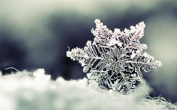 6 snowflake